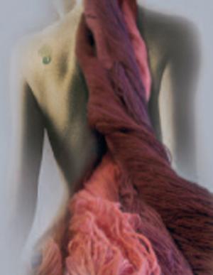 http://www.filatures-du-parc.com/Files/Image/dos_home.jpg
